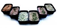 Gekoelde salades, sauzen, tapas & tapenades
